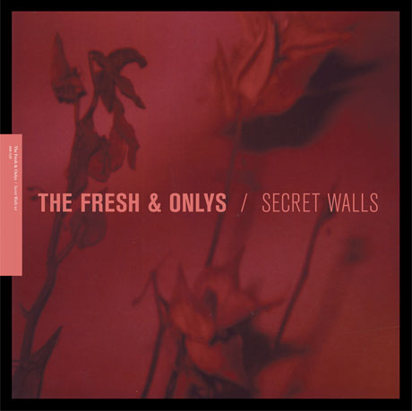 Secret Walls Cover